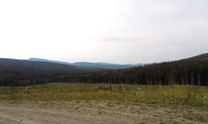 My view for most of my travels in the back country.